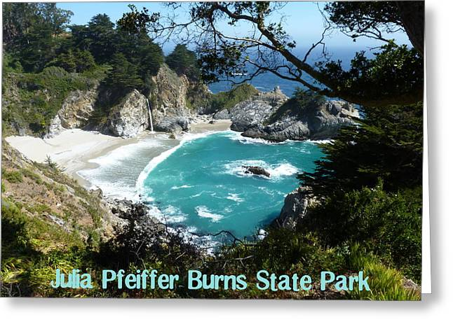 Coast Highway One Greeting Cards - Waterfall at Julia Pfeiffer Burns State Park Greeting Card by Carla Parris