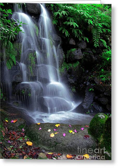 Moss Green Greeting Cards - Waterfall Greeting Card by Carlos Caetano