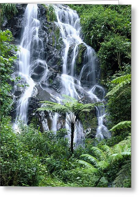 Woodland Scenes Greeting Cards - Waterfall Cascading Over Rocks Greeting Card by David Pluth