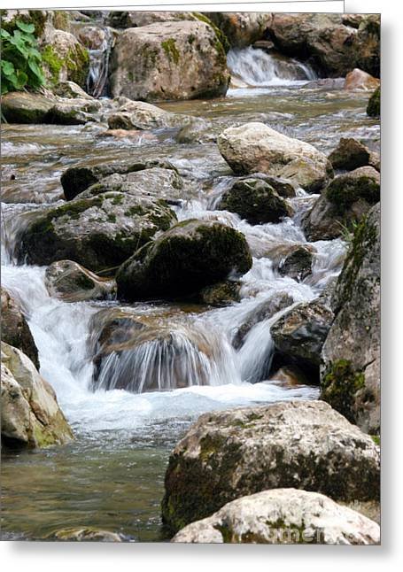 Stream Greeting Cards - Waterfall Greeting Card by Francisco Leitao