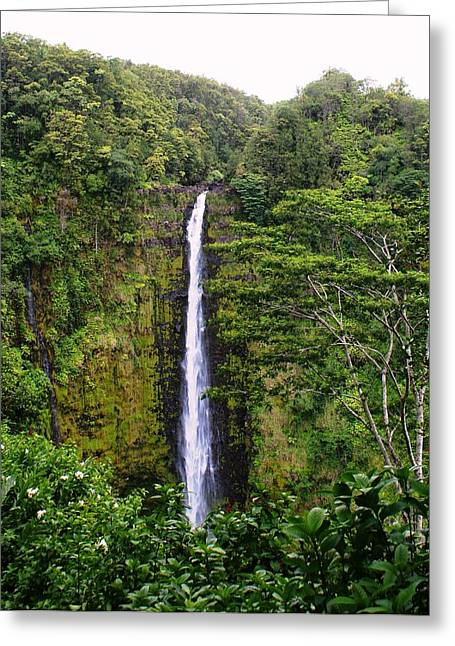 Luis And Paula Lopez Greeting Cards - waterfall Hawai Greeting Card by Luis and Paula Lopez