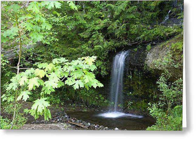Ground Level Greeting Cards - Waterfall In The Forest Greeting Card by Craig Tuttle