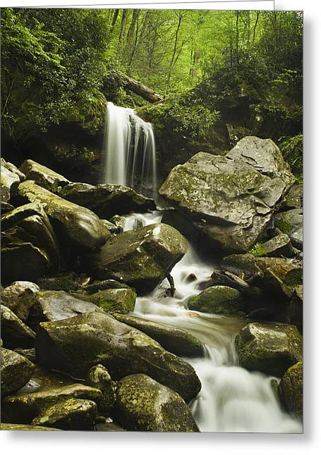 Fall River Scenes Greeting Cards - Waterfall in the Spring Greeting Card by Andrew Soundarajan