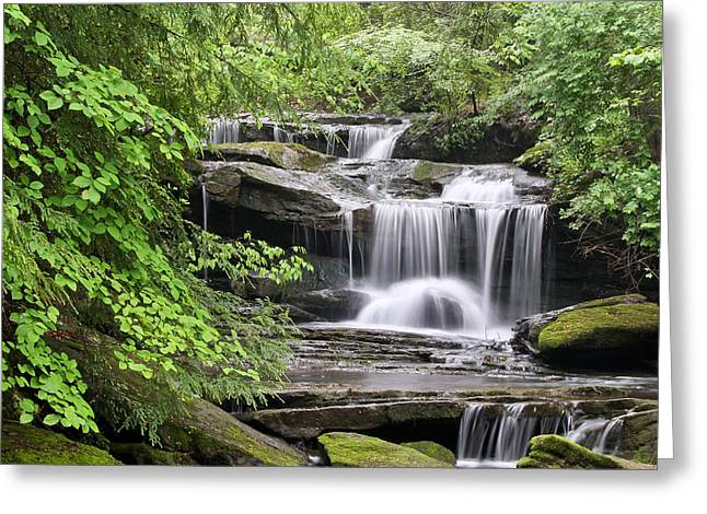 Walden Greeting Cards - Waterfall Near Mabbitt Spring Greeting Card by Tom and Pat Cory