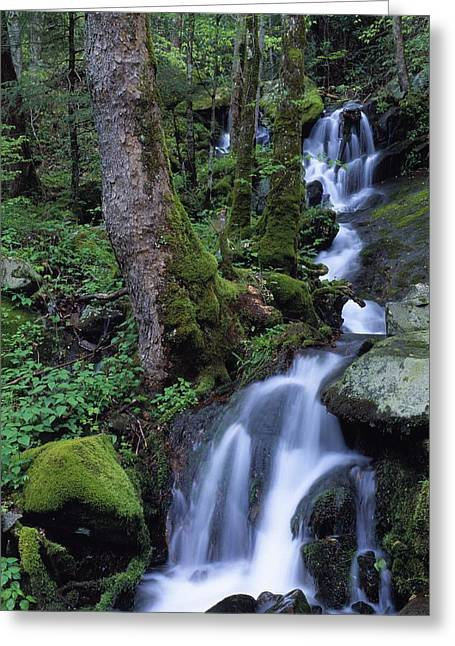 Pouring Greeting Cards - Waterfall Pouring Down Mountainside Greeting Card by Natural Selection Robert Cable