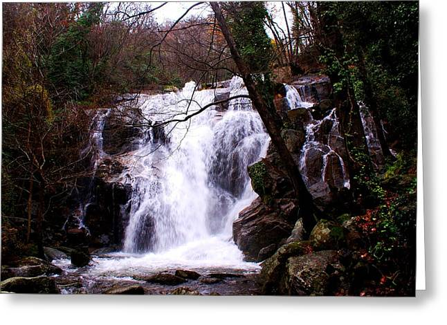 Luis And Paula Lopez Greeting Cards - Waterfall Spain Greeting Card by Luis and Paula Lopez