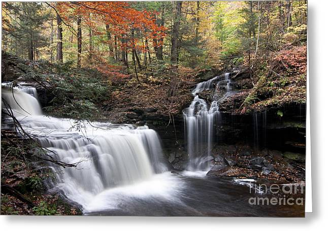 Stream Greeting Cards - Waterfalls at Ricketts Glen State Park PA Greeting Card by Robert Wirth