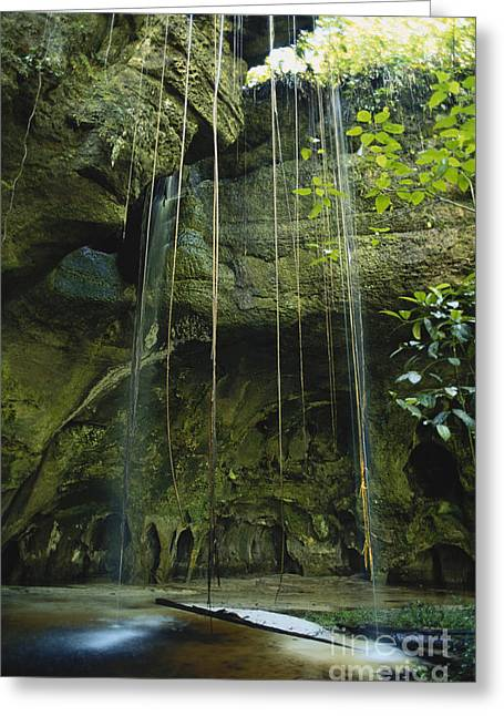 Waterfalls  Greeting Card by Jacques Jangoux and Photo Researchers