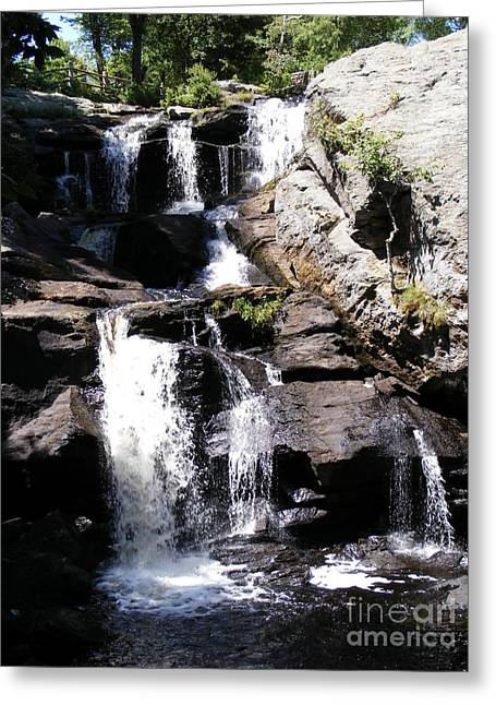 Devils Den Greeting Cards - Waterfalls of Devils Den Greeting Card by Margie Avellino