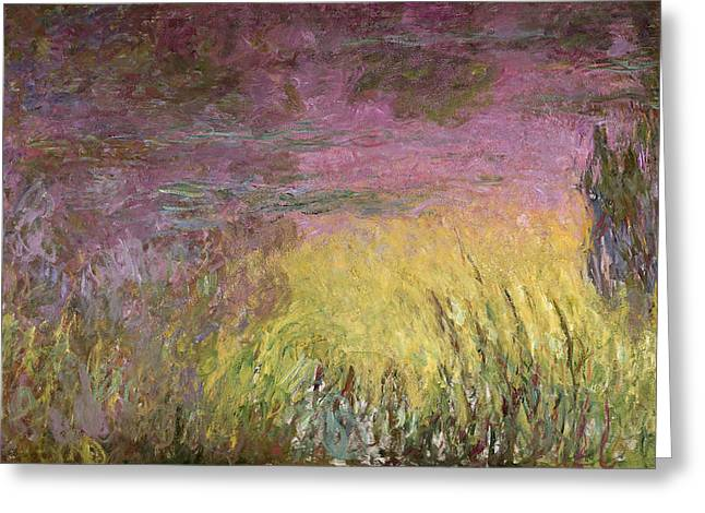 Water Lilly Greeting Cards - Waterlilies at Sunset Greeting Card by Claude Monet