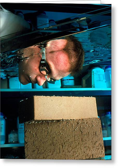 Polymer Clay Greeting Cards - Waterproof Bricks Greeting Card by Volker Steger