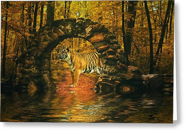 Tiger Woods Greeting Cards - Waters edge Greeting Card by Sharon Lisa Clarke