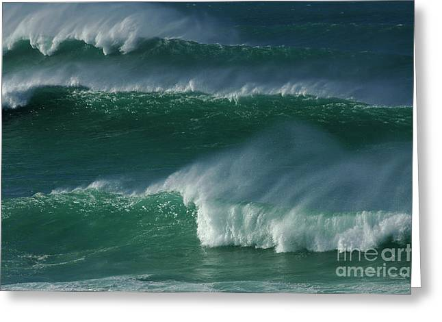 Wind Surfer Greeting Cards - Waves Of Hawaii Greeting Card by Bob Christopher