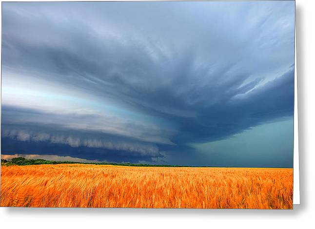 Supercell Greeting Cards - Waving Wheat Greeting Card by Chris  Allington