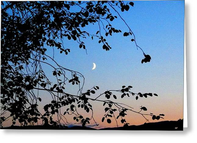 Waxing Crescent Greeting Cards - Waxing Crescent Moon Greeting Card by Will Borden