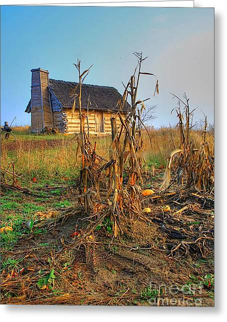 Log Cabins Greeting Cards - Way back when Greeting Card by Robert Pearson