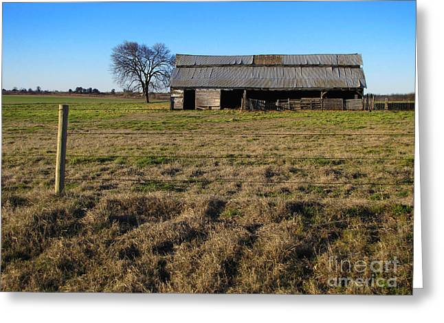 Oklahoma Landscape Greeting Cards - Weathered and Worn Greeting Card by Ann Powell