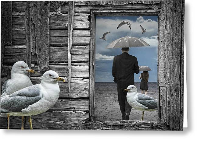 Randy Greeting Cards - Weathering the Gulls Greeting Card by Randall Nyhof