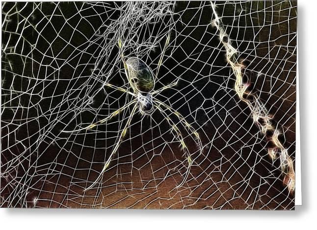 Arachnids Greeting Cards - Web of Complexity Greeting Card by Douglas Barnard