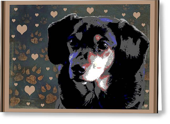 Dachshund Puppy Digital Art Greeting Cards - Wee With Love Greeting Card by One Rude Dawg Orcutt