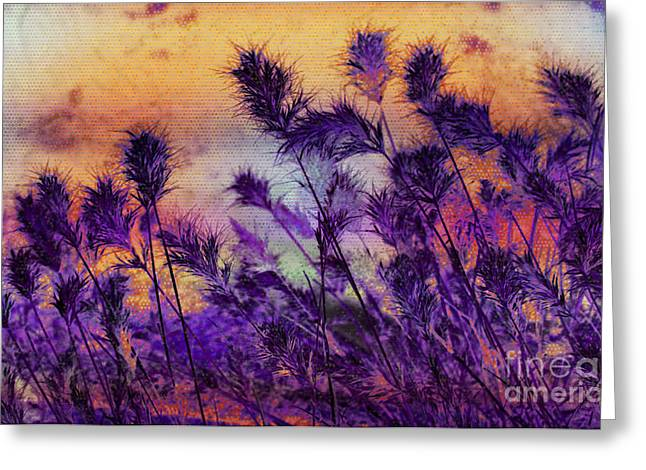 Poking Greeting Cards - Weeds  Greeting Card by Julie Lueders