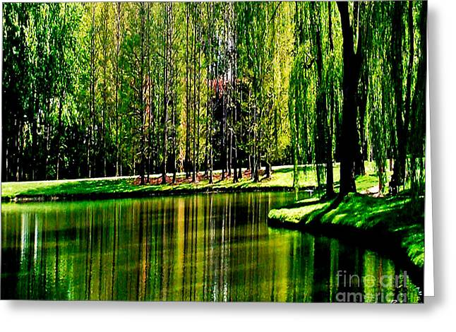 Carol F Austin Greeting Cards - Weeping Willow Tree Reflective Moments Greeting Card by Carol F Austin