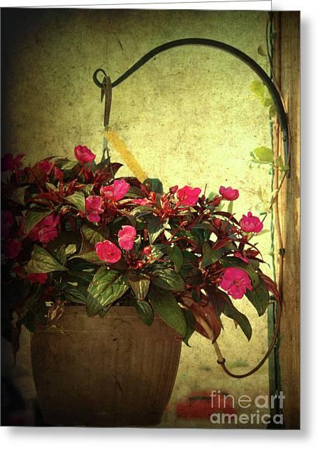 Pink Greeting Cards - Welcome Home Greeting Card by Susanne Van Hulst