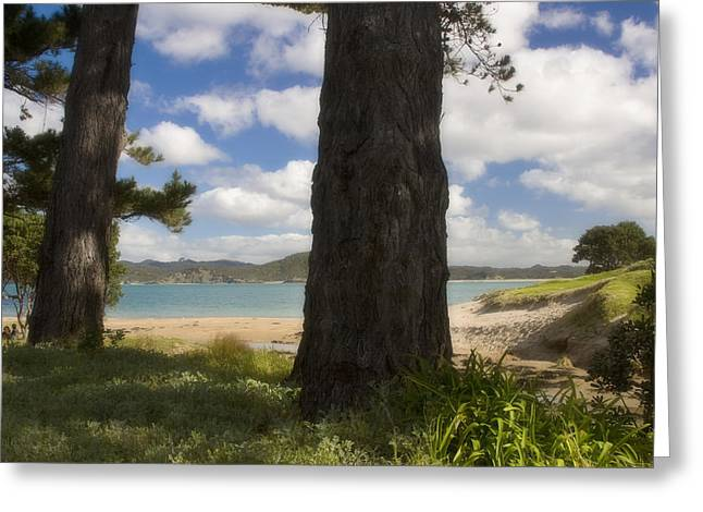 Wellingtons Greeting Cards - Wellingtons Bay Greeting Card by Graham Hughes