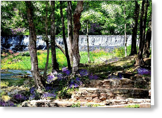 Wellspring Greeting Cards - Wellspring of Life Greeting Card by Maria Urso