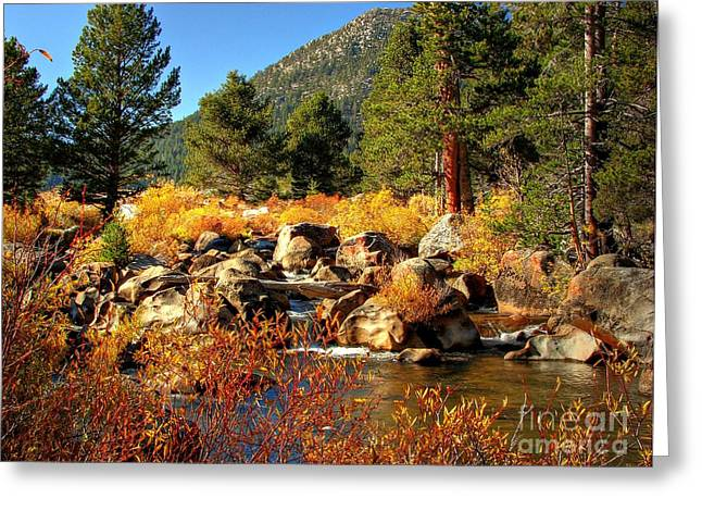 West Fork Greeting Cards - West Fork of the Carson River Fall Colors Greeting Card by Scott McGuire
