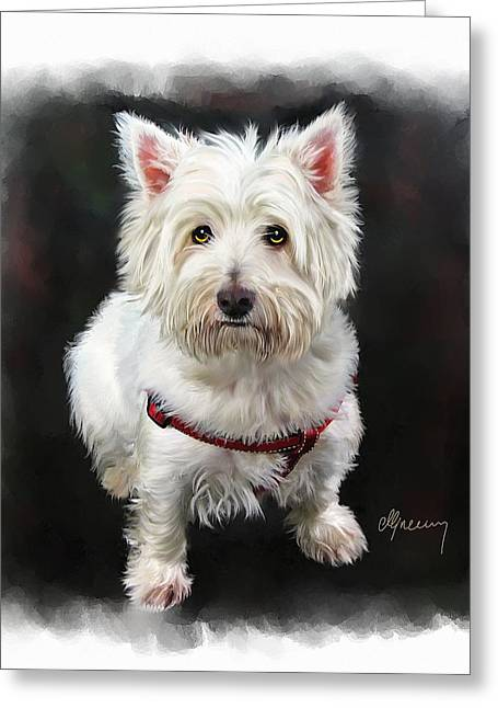 Time2paint Greeting Cards - West Highland White Terrier Greeting Card by Michael Greenaway