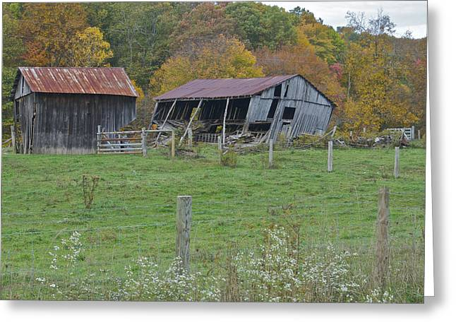 Metal Roof Greeting Cards - West Virginia Barn 3211 Greeting Card by Michael Peychich