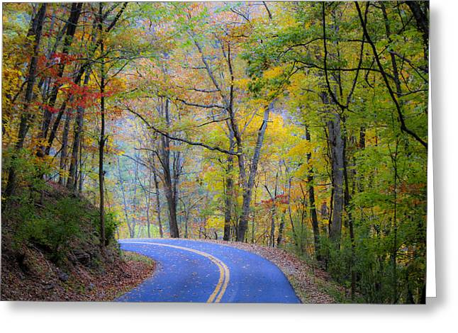 Scenic Drive Greeting Cards - West Virginia Country Road Greeting Card by Teresa Mucha