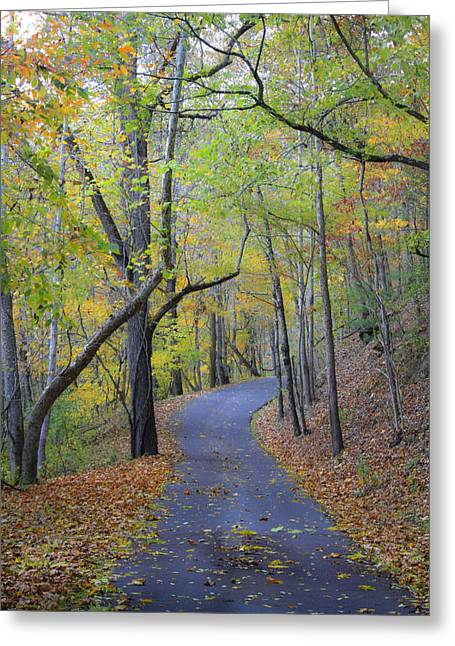 Scenic Drive Greeting Cards - West Virginia Fall Scene Greeting Card by Teresa Mucha