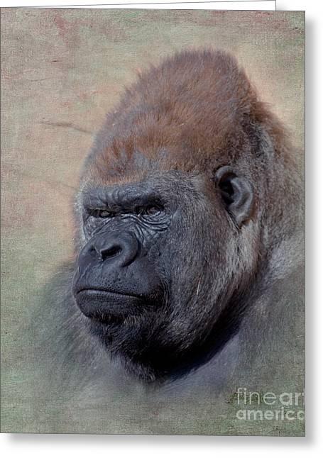 Western Digital Art Greeting Cards - Western Lowland Gorilla Greeting Card by Betty LaRue
