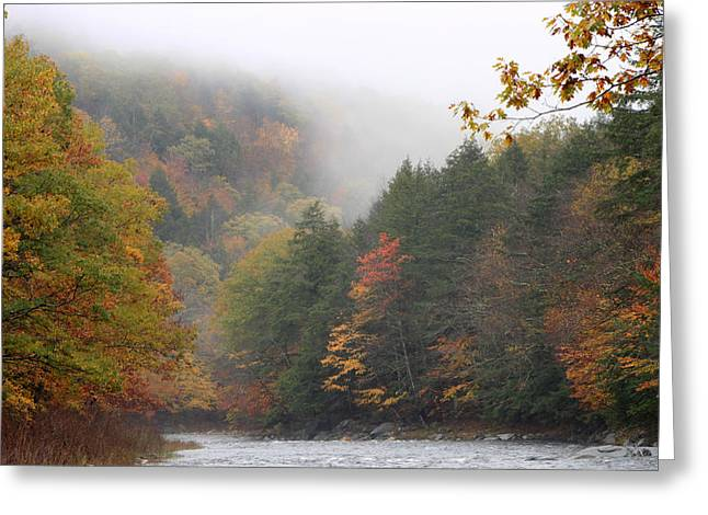 Westfield River Greeting Cards - Westfield River Autumn Fog Greeting Card by John Burk