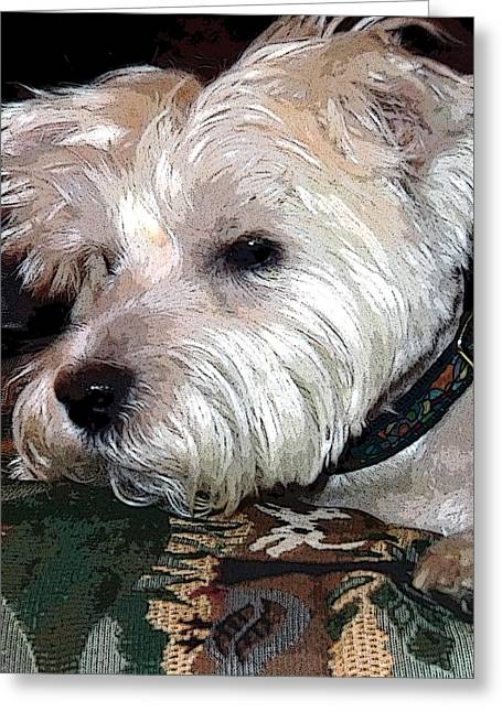Best Sellers -  - Puppy Digital Art Greeting Cards - Westie Greeting Card by Mindy Newman
