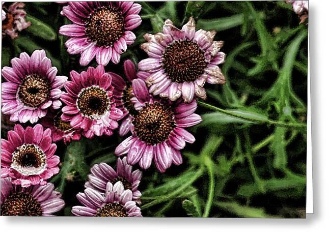 Wet Petals Greeting Cards - Wet Petals Greeting Card by Bonnie Bruno
