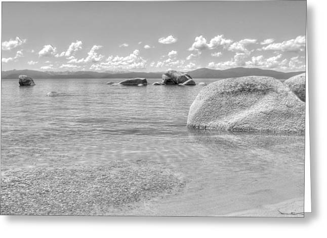 Whale Beach Greeting Cards - Whale Beach Black and White Greeting Card by Brad Scott