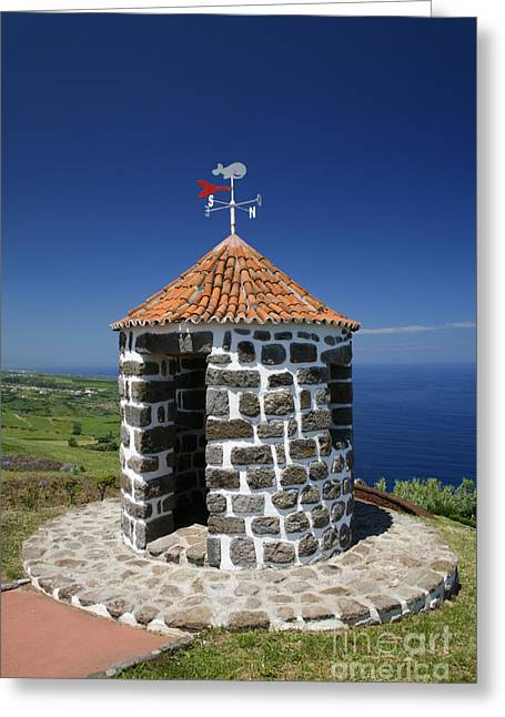 Wind Vane Greeting Cards - Whale lookout spot Greeting Card by Gaspar Avila