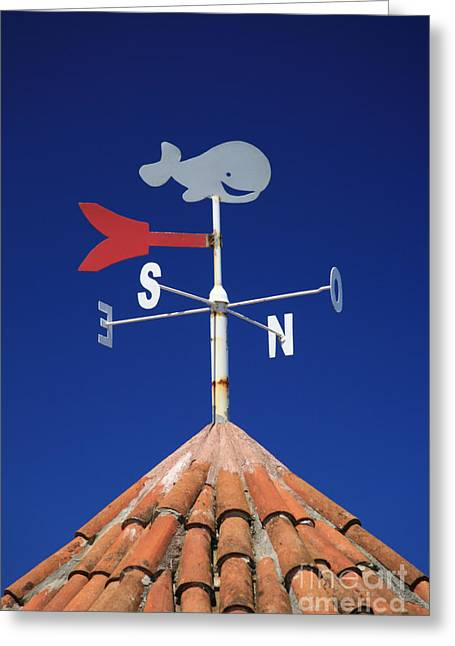 Wind Vane Greeting Cards - Whale weather vane Greeting Card by Gaspar Avila