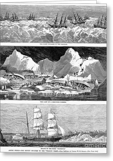 1876 Greeting Cards - Whaling Fleet In Ice, 1876 Greeting Card by Granger