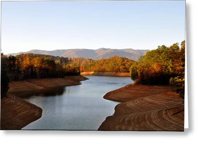 Macrocosm Photographs Greeting Cards - What A View Greeting Card by Brittany H