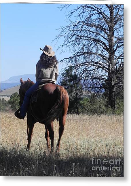 Horse Portrait Photographs Posters Greeting Cards - What Lies Ahead Series...Follow Your Dreams Greeting Card by Chrisann Ellis