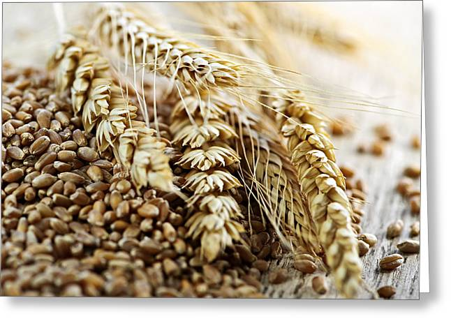 Healthy Greeting Cards - Wheat ears and grain Greeting Card by Elena Elisseeva