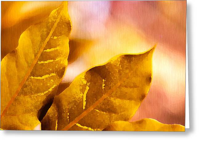 When Leaves Turn Gold Greeting Card by Artist and Photographer Laura Wrede