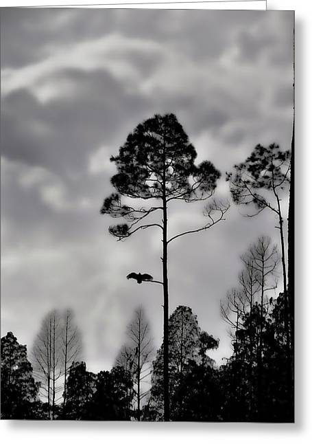 Grey Clouds Greeting Cards - When The Air Gets Too Thin Greeting Card by Jan Amiss Photography