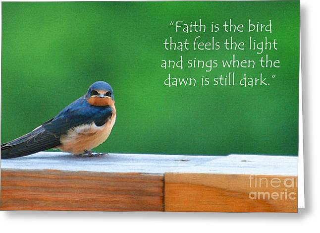 Baby Bird Greeting Cards - When The Dawn Is Still Dark Greeting Card by Diane E Berry