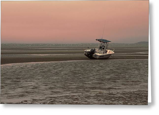 Massachusetts Coast Greeting Cards - Where Did The Tide Go Greeting Card by Karol  Livote