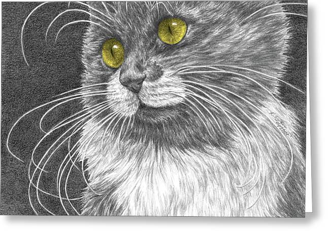 Whiskers - Color Tinted Art Print Greeting Card by Kelli Swan